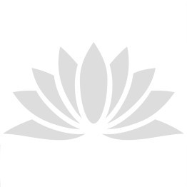 POWER A ENHANCED WIRED CONTROLLER  ROJO FROST